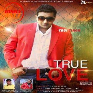 U K Wale Pound Yogi Singh mp3 song download, U K Wale Pound Yogi Singh full album mp3 song