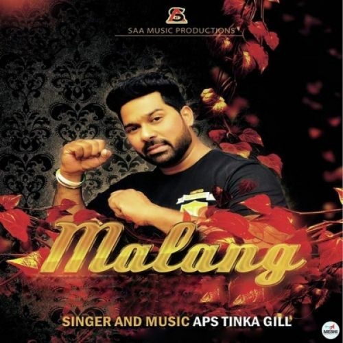 Malang Aps Tinka Gill Mp3 Song Download Djjohal Com