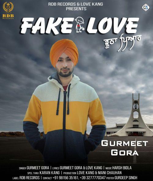 Fake Love Gurmeet Gora Mp3 Song Download