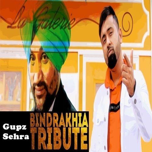 Bindrakhia Tribute Gupz Sehra Mp3 Song Download