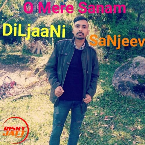 O Mere Sanam DiLjaaNi SaNjeev mp3 song download, O Mere Sanam DiLjaaNi SaNjeev full album mp3 song