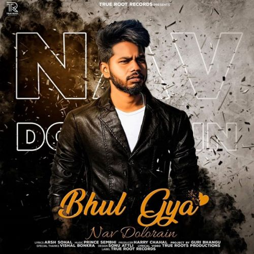 Bhul Gya Nav Dolorain Mp3 Song Download