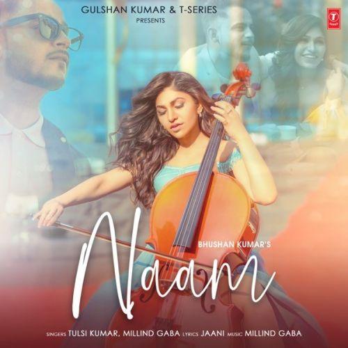 Naam Tulsi Kumar, Milind Gaba Mp3 Song Download