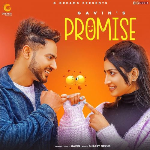 Promise Gavin Mp3 Song Download