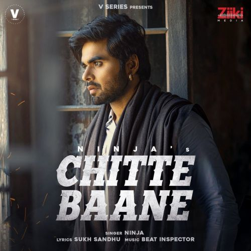 Chitte Baane Ninja Mp3 Song