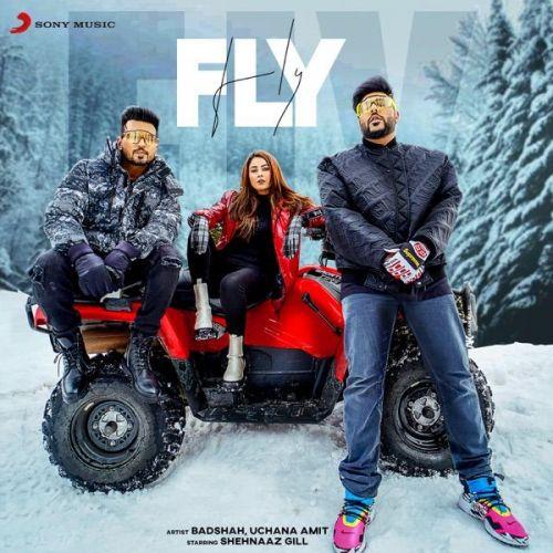 Fly Badshah, Uchana Amit Mp3 Song