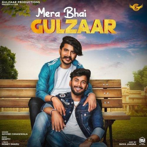 Mera Bhai Gulzaar Govind Chhaniwala mp3 song download, Mera Bhai Gulzaar Govind Chhaniwala full album mp3 song